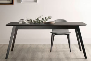Aise Dining Table