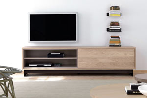 Basic TV Unit